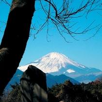 富士見塚ハイキングコース