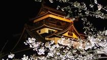 松江城 夜景