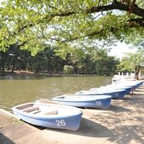 *公園内ボート池
