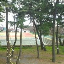 *敷島公園内テニスコート