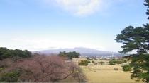 *部屋からの景色(赤城山側)