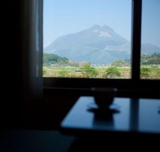 和室から見える由布岳