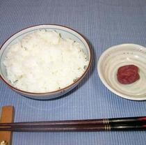 福井県内産有機米コシヒカリと自家製梅干し