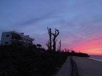 夕暮れ時のビーチとホテル