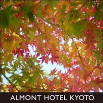 京都観光画像11
