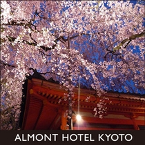 京都観光画像4