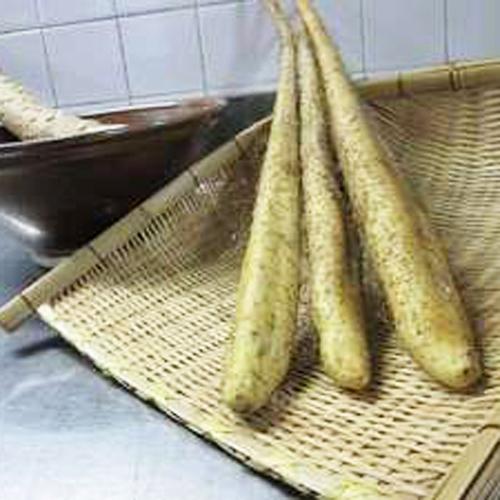 *【夕食一例】倉真の「自然薯」は、ねばりが強いのが特徴で、とろろ汁は、多くの方に人気の一品です。