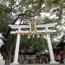 *【事任八幡宮(ことのままはちまんぐう)】掛川のパワースポットとして有名です♪