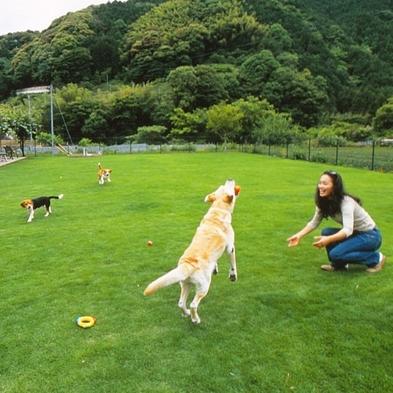 【バイシズオカ対象施設】【愛犬と一緒】リピート率ナンバーワン☆月替わり会席コース