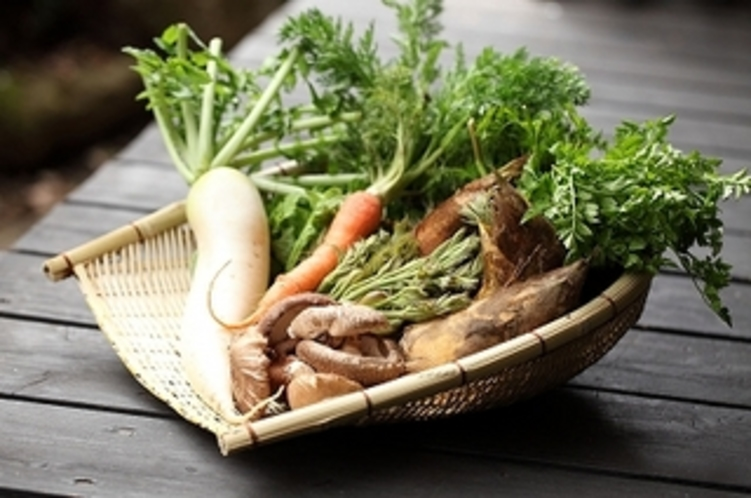 地元の無農薬・減農薬野菜