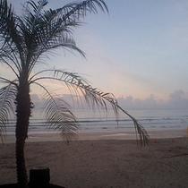 *【下田多々戸浜】美しい白砂ビーチとして有名です。