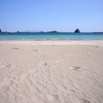 *【下田外浦海岸】美しい海岸を散策しませんか?