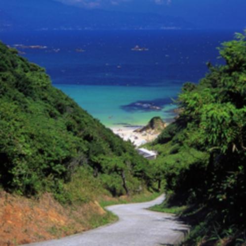 *【下田九十浜】波も穏やかな海水浴場。プライベート感覚で海水浴を満喫。