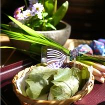 *5月5日の端午の節句には柏餅と菖蒲湯をご用意。菖蒲湯で一年の健康祈願をしませんか?