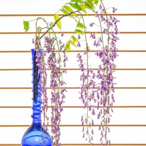 *【選べる季節のお花】ロビーにてお好きなお花をお選びいただきお客様の滞在を彩らせていただきます