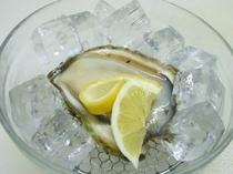 【生岩牡蠣】