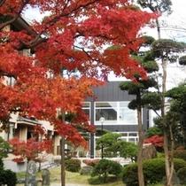 庭園[秋]