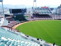 【マツダスタジアム】緑の天然芝がまぶしいです!さまざまな種類の応援席があります♪