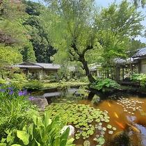 【日本庭園】昼景