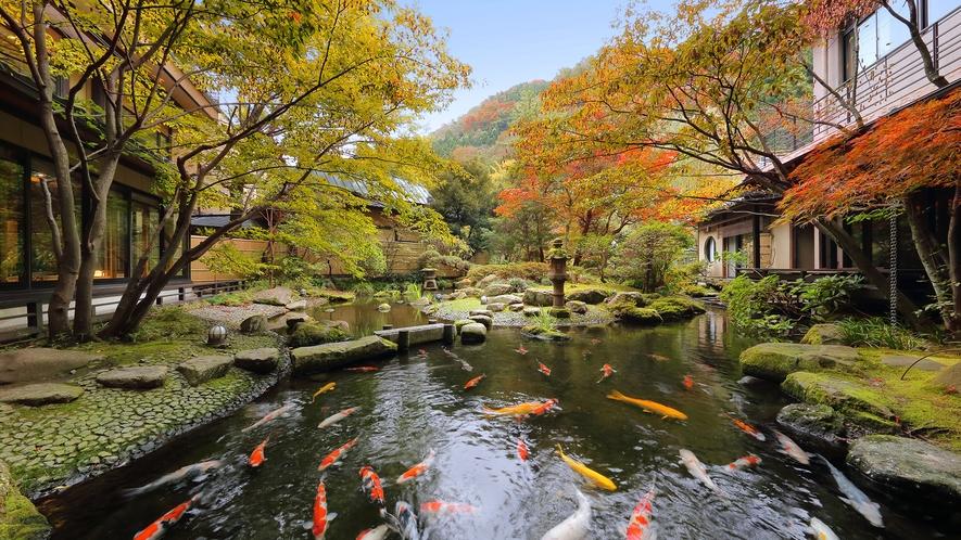 【日本庭園】