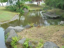 ゲストハウスの庭園1