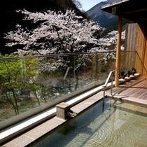 ◆露天風呂※一例(春)