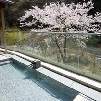 ◆展望露天風呂※一例(春)