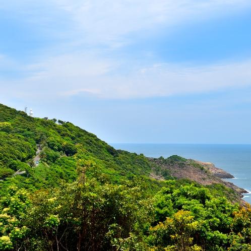 遠くから見た細島灯台