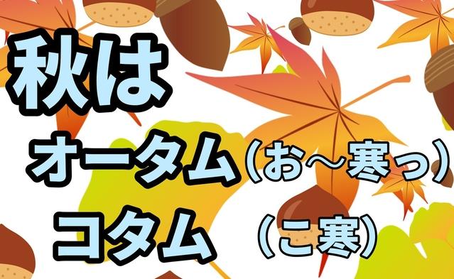【秋はオータムコタム】期間限定ポイント10倍!!