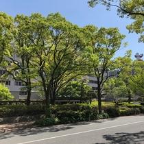 ◆ビジネス◆福岡県庁、警察本部(徒歩4分)緑豊かな景観の中にあります