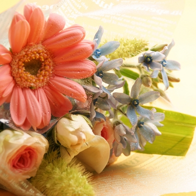 【和室】大切な人、深める家族の絆、誕生日や記念日・長寿祝など 御祝いプラン(特典付&部屋食)