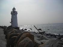 潮風と荒波に立つ伊良湖岬灯台