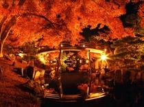 玄宮園の紅葉