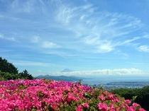 さつきと富士山