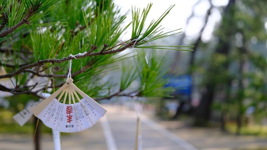 【天橋立】当館から徒歩1分の智恩寺は朝の散策がオススメ!