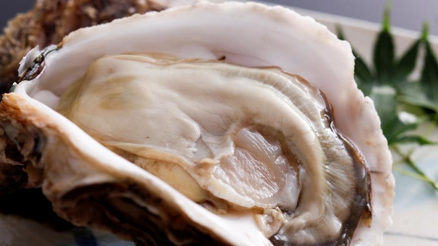 【夏限定】海のミルクと称されるミネラル豊富な特大「岩牡蠣」