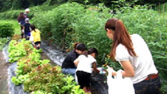 【ドクターフィッシュ×野菜収穫体験】\お日にち&1日3組限定/触れて楽しむ夏のファミリー応援特別企画