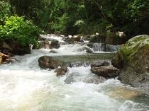 宿近くの渓流
