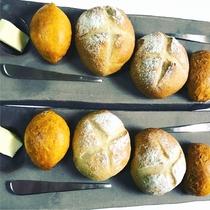 *[Dinner/パン一例]焼きたてパン2種。この日はプチカンパーニュ&トマトパン。