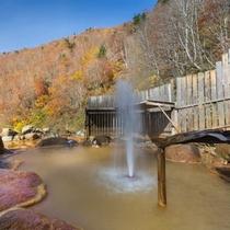 紅葉の山々の中で入る露天風呂。日本で唯一、間欠泉が体験できる風呂!