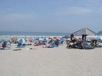 夏の白浜ビーチ!