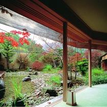 「離れ山翠」秋の廊下と中庭