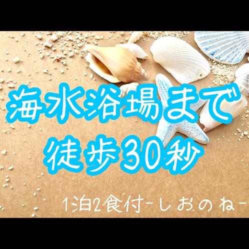 海水浴プラン♪最大滞在時間30時間-しおのね-