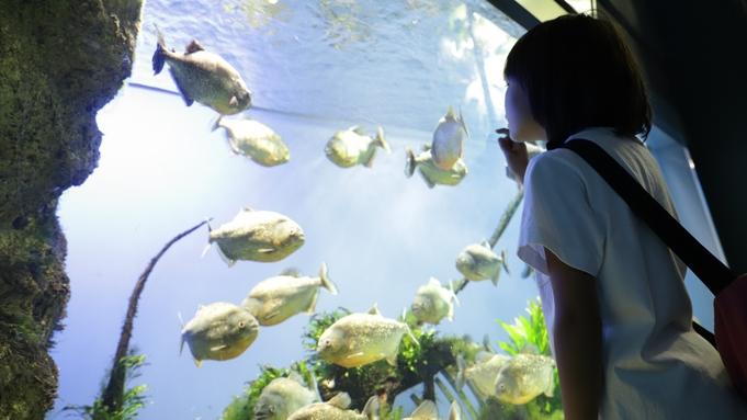 【鳥羽水族館入館券付プラン】約1200種30000点の生きものと出会える!<朝食のみ>