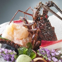 【和会席】ぷりぷりとした甘い身を存分に♪伊勢海老のお造りをお愉しみください!(写真はイメージです)