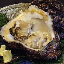 夏季限定!岩牡蠣