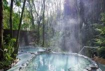 おんりーゆーの露天風呂は周囲を広葉樹林に囲まれ、四季折々、そのたたずまいを美しく変えていきます。