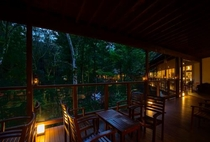 夜の森カフェ テラス席