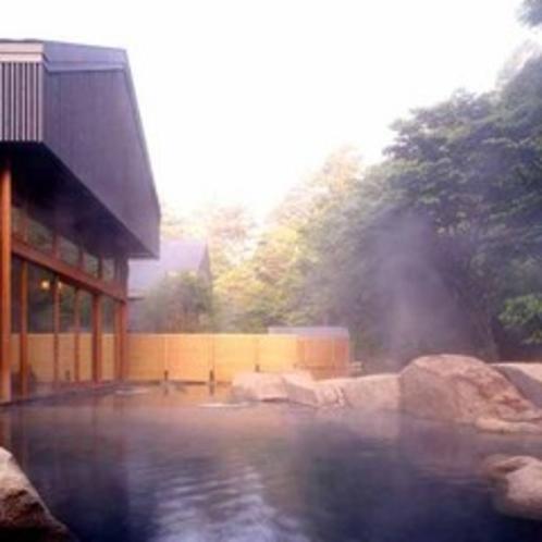 *星野温泉トンボの湯露天風呂