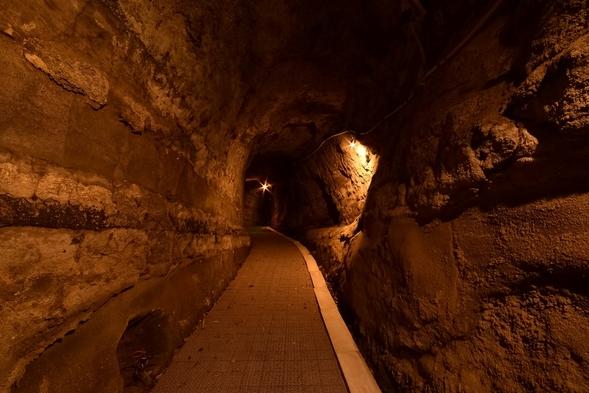 【隠れ家風離れ】約50mの洞窟を通った先の客室でプライベートを楽しむ!スタンダード2食&2名〜金目鯛
